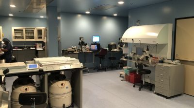 IVF lab alternative to tubal reversal BTA when tubes burned or too short for surgery